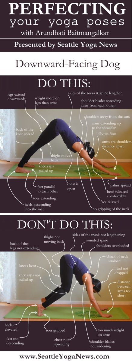 downward-facing-dog-Adho-Mukha-Svanasana-yoga-pose-asana-S-v3