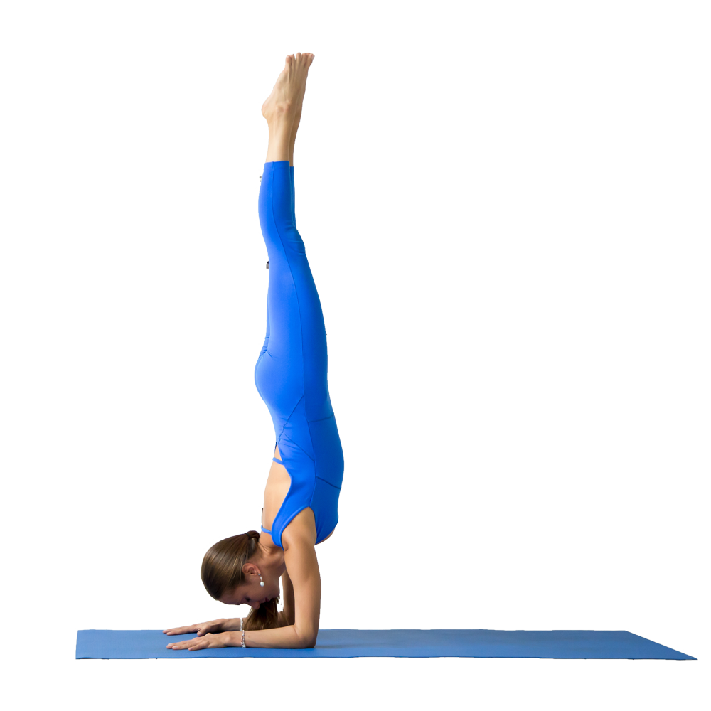 Arm Balance – Pincha Mayurasana  IMAGES, GIF, ANIMATED GIF, WALLPAPER, STICKER FOR WHATSAPP & FACEBOOK