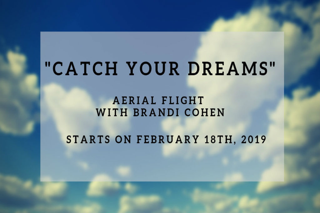 Catch your Dreams Aerial Flight with Brandi Cohen