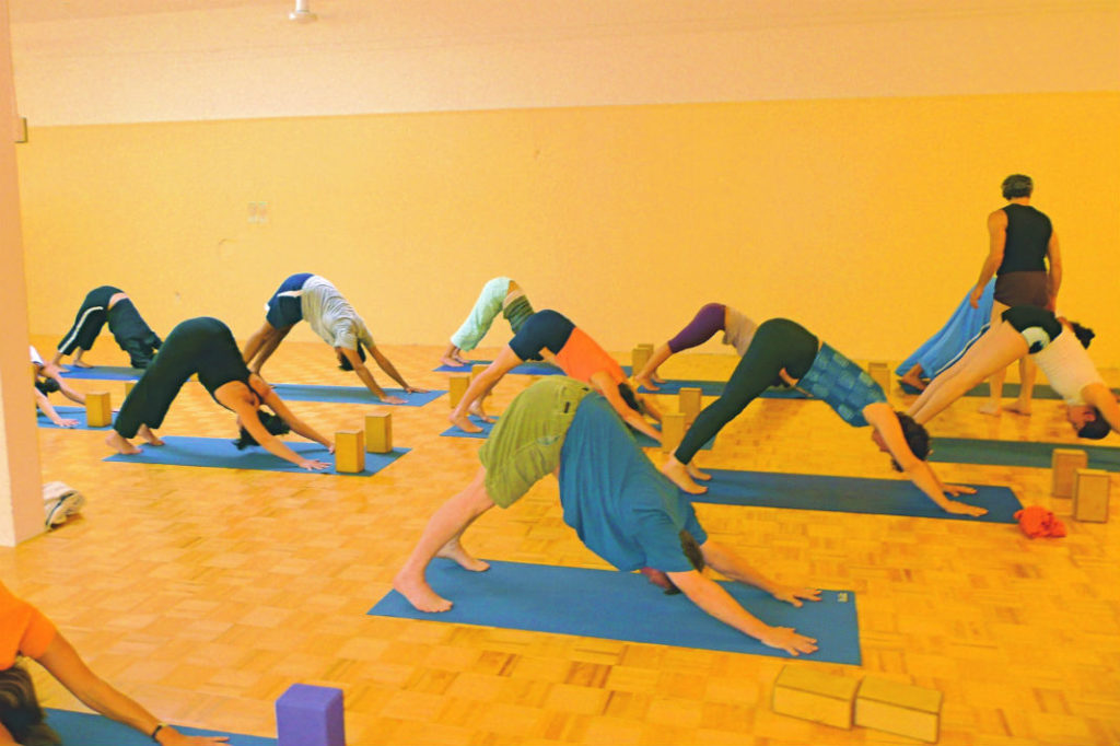 Sample Iyengar Yoga Alignment Yoga Teacher Training Class-Center for yoga of Seattle