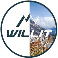 Willit - logo